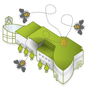 Eco_Luxury_Bees_vector