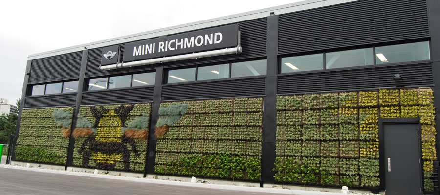 Green-Wall-MINI-Richmond